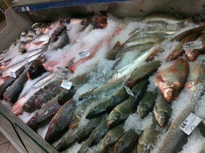 Рыбная точка на рынке