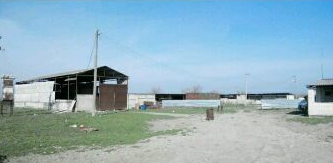 Ферма