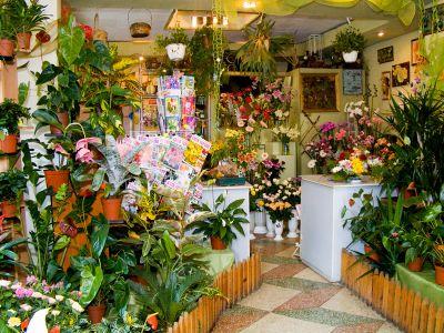 Продаю салон цветов с гарантированной прибылью