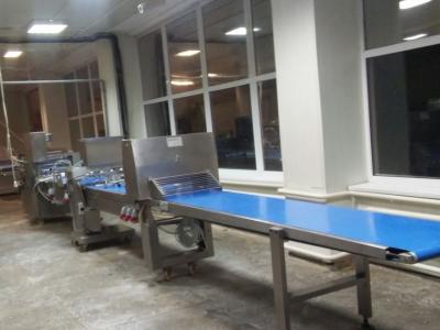 Производство замороженных полуфабрикатов из теста