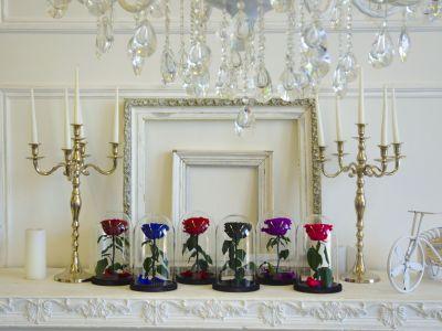 Розы в колбе. Трендовый цветочный бизнес