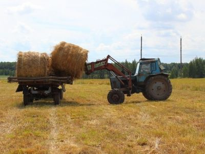 Фермерское хозяйство в Рязанской области